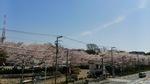 飛鳥山.JPG