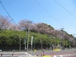 asukayama.JPG